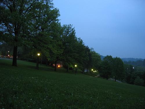 prettyeveninglights